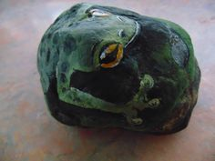 Awesome frog painted on stone!