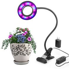 Profession Led Grow Light 10W Adjustable 6 Level Dimmable Clip Desk Plant Growth Lamp with 360 Degrees Flexible Gooseneck  #Affiliate