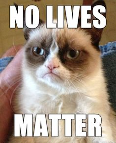 Grumpy Cat came out of retirement to weigh in on the current political climate http://ift.tt/2xK6vzG
