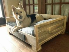 Doggie bed made from pallets