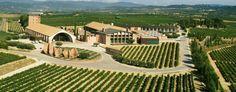 'Magnificat, Del terroir a la copa', un evento único que reunirá a grandes figuras internacionales del vino y los espirituosos https://www.vinetur.com/2014031714713/magnificat-del-terroir-a-la-copa-un-evento-unico-que-reunira-a-grandes-figuras-internacionales-del-vino-y-los-espirituosos.html