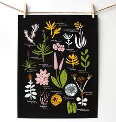 Succulent Poster