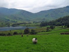 Your European Rituals - Slide Show - NYTimes.com England's Lake District