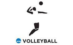 Volleyball logos - Google 搜尋