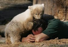 Knut the three-month old baby polar bear plays with his minder zoo keeper Thomas Doerflein in the sand under the cheering gaze of the public at the Berlin Zoo March 27, 2007 in Berlin, Germany. Knut was rejected by his mother and animal activists have said Knut should be put down, though zoo officials have vowed to nurse him to maturity with human help. Hundreds of visitors gather at Knut's enclosure every day to watch Knut play.