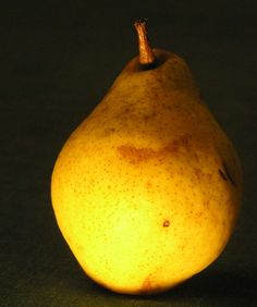 Study of a pear