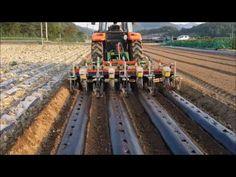 대성농기계 (4골) 콩두둑성형,비닐피복,일괄파종(괴산불정, 문경 농암) - YouTube Tunnel Greenhouse, Agriculture, Tractors, Workshop, Gardening, Atelier, Lawn And Garden, Tractor, Horticulture
