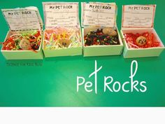 My first graders made homes for their pet rocks using soap boxes. We found the mass, length & width of our pet rocks. Such a fun way to wrap up our geology unit!