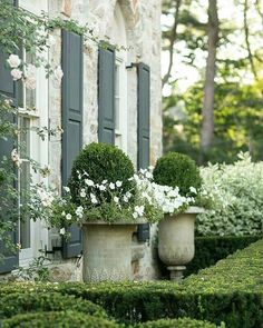 Green painted raised panel shutters on patina stucco house, ball topiary boxwood in cast iron urns - Garden Mesospace : indoors and outdoors at the same ...