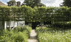 Pleached crab apple trees, a formal touch, screen the gatehouse entry. Imported from Belgium, the 12-year-old crab apple trees bloom with tiny pinkish-white flowers in spring.