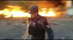 Nuestro respeto a policía que salva perro de incendio