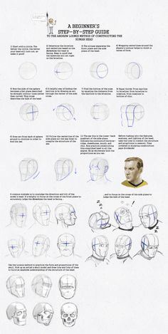 Loomis Method: A Beginner's guide WIP by SeaQuenchal.deviantart.com on @DeviantArt