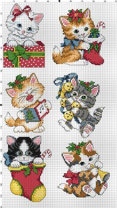 Animals Christmas Kittens