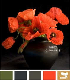 Design-seeds.com, poppy tones color palette shown. Check out this site for lots and lots of color chips created from photo inspirations. Search by theme (autumn, vintage, edible, etc.), or by color value. Each photo has 5 sample color chips. Great inspiration for choosing your quilt fabrics!