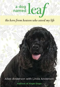The New Cover for A DOG NAMED LEAF