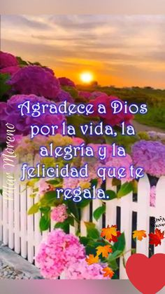 Cute Good Morning Quotes, Good Morning Beautiful Images, Good Day Quotes, Morning Inspirational Quotes, Good Morning Messages, Funny Happy Birthday Song, Good Morning In Spanish, Good Day Wishes, Latest Good Morning Images