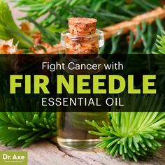 Fir Needle Essential Oil — Fight Cancer, Infections & Even Odor - Dr. Axe http://antiagingsuperfruits.com/