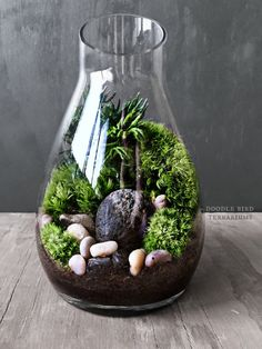 Planted with a mixture of delicate woodland mosses, this glass carafe terrarium…