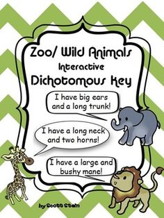 This is not your average PowerPoint! This PowerPoint is a live-working interactive dichotomous key! Each slide has code embedded within it that allows the students to answer yes or no questions about zoo/ wild animals.