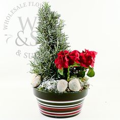 Christmas arrangement,flowers,wholesale flowers and supplies