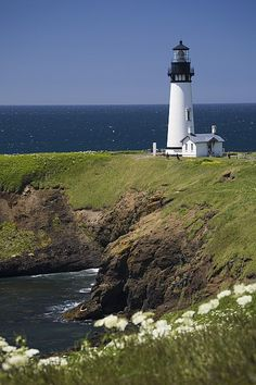 White Lighthouse On The Ocean With Blue Sky And Wildflowers Newport Oregon United States Of America