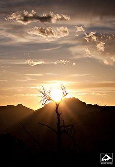 Catching the Sun - Catalina Mountains, Arizona