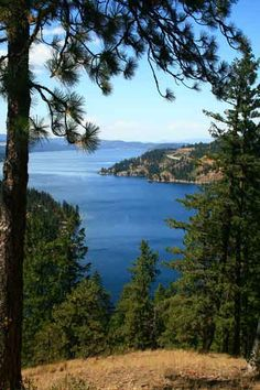 To me, this is paradise. Dad's hometown of Coeur d'Alene, Idaho.