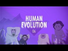 Sean riley riley3154 on pinterest human evolution crash course big history in which john green and hank green teach you about how human primates moved out of africa and fandeluxe Gallery
