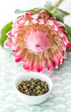 My tasting notes: Thai oolong — The Tea Squirrel, flowers, king protea