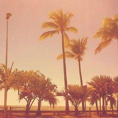 Mon île.. 3 #974 #island #sun #paradise