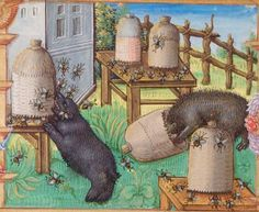 World Bee Day – Folia Magazine Medieval World, Medieval Art, Medieval Manuscript, Illuminated Manuscript, I Love Bees, Bee Art, Bees Knees, Dark Ages, Bee Keeping