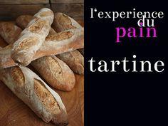 Tartine Bread Experiment: tree branches