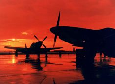Missouri Air National Guard Mustangs of the Fighter Squadron, circa Aviation World, Aviation Art, Ww2 Aircraft, Military Aircraft, Ghost Rider, Shadow Silhouette, P51 Mustang, Military History, World War Two