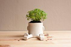 Céramique de pot de fleurs - Espatarrado