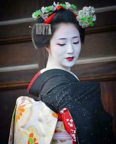 Maiko, Mamefuji. Kyoto. Japan
