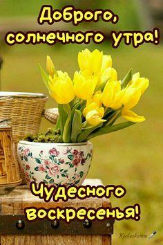 Счастливые Выходные, Доброе Утро, Растения, Вдохновение
