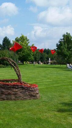 Weidenkorb Tulpen