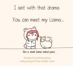 no llama drama Cute Funny Pics, Cute Puns, Cute Memes, Cute Quotes, Cute Pictures, Potato Funny, Cute Potato, Cute Comics, Funny Comics