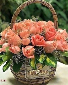 Beautiful Flowers Wallpapers, Beautiful Flowers Garden, Amazing Flowers, Beautiful Roses, Pretty Flowers, Orchid Flowers, Rose Flower Arrangements, Creative Flower Arrangements, Orquideas Cymbidium