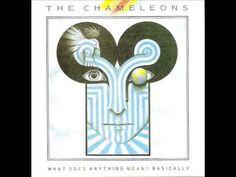 "THE CHAMELEONS - ""What Does Anything Mean? Basically"" (Full Album)"