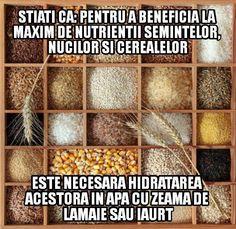 Prin procesul de hidratare a nucilor, semintelor si cerealelor se reduc inhibitorii nutritionali si substantele toxice, respectiv fitati (acid fitic), polifenoli (taninuri) si goistrogeni (anti-nutrienti). www.mogonel.ro #sanatate