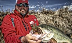 Why Wood is a Good Option for Winter Bass Fishing - Wired2fish - Scout
