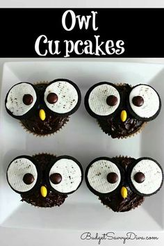 Owl cupcakes Chocolate cupcake Oreo cookies Chocolate frosting Reeses pieces