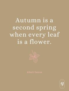 fall aesthetic // fall quotes // fall inspiration Autumn Home, Autumn Inspiration, Fall, Quotes, Fall Season, Quotations, Autumn, Qoutes, Manager Quotes
