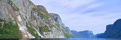 Experience the fjords, wildlife, and nature of Western Brook Pond in Gros Morne National Park. Newfoundland And Labrador, Boat Tours, Family Travel, Pond, Westerns, National Parks, Wildlife, Mountains, Nature
