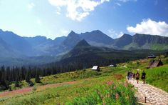 Beautiful place - Hala Gąsienicowa, Tatra Mountains, Poland (2014) Tatra Mountains, Poland, Golf Courses, Beautiful Places, Nature, Travel, Naturaleza, Viajes, Destinations