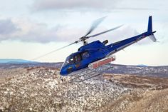 1600x1067 px eurocopter as350 cureuil wallpaper hd by Sewell Backer