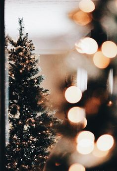 Simple little Christmas tree🎄🎄 Christmas Time Is Here, Christmas Mood, Noel Christmas, Merry Little Christmas, Christmas Is Coming, Christmas Style, White Christmas Lights, Hygge Christmas, Xmas Lights