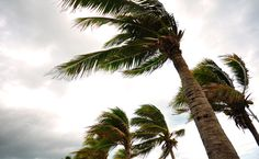 Do Extreme Weather Events Change Views on… http://www.care2.com/greenliving/do-extreme-weather-events-change-views-on-climate-policies.html
