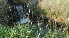 Ždiarsky potok